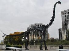 Brachiosaurus Skeleton Glossy Poster Picture Photo dinosaur jurassic fossils 582