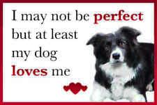 Funny My Dog Loves Me BORDER COLLIE Dog Vinyl Car Van Sticker Pet Animal Lover