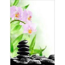 Stickers muraux déco : galet orchidée 1374
