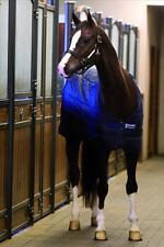 Horseware Liner - 200g