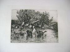 Original Etching By Charles Volkmar (1841-1914)