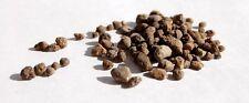 Gypsum Calcium Sulfate Dihydrate Granular Bulk 35 lbs SOIL TEA GARDEN COMPOST