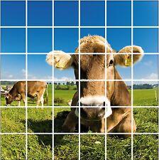 Sticker carrelage mural, faience, déco cuisine ou salle de bain Vache réf 842