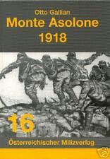 STURM und KAMPF um den MONTE ASOLONE 1918 GEBIRGSKRIEG Alpen Isonzo 1. Weltkrieg