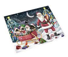 Merry Christmas Santa Sled Pekingese Dogs Woven Throw Sherpa Blanket T281