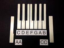 Piano Keytop/Key Top, Satin Simulated Ivory Long Head pick A,B,C,D,E,F,G,AA,CC