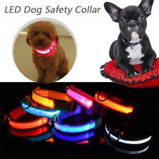 Collier en Nylon Lumineux LED USB Rechargeable  Chien Chat Animal de Compagnie