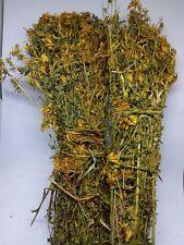 St. John's Wort Hypericum perforatum Herbal tea Emotional well-being