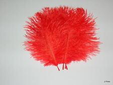 10 FERRARI RED OSTRICH FEATHERS 10-13''L