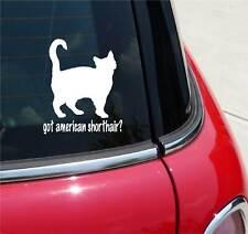 GOT AMERICAN SHORTHAIR? CAT GRAPHIC DECAL STICKER ART CAR WALL DECOR