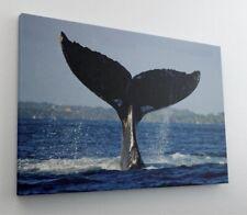 Wal Flosse Meer Wasser Tier Leinwand Bild Wandbild Kunstdruck L0146