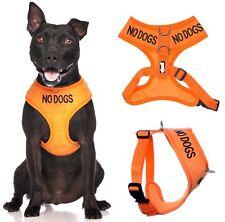 Nessun CANI ANTI Pull Vest Harness IMPERMEABILE IMBOTTITO (non buono con altri cani) o impostare