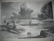 Gravure 1867 - Les pêches des phoques