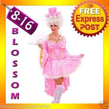 J42 Pink Marie Antoinette Renaissance Masquerade Ball Dress Halloween Costume
