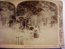 1894 KROLL'S BEER GARDEN, BERLIN, GERMANY, STEREOVIEW