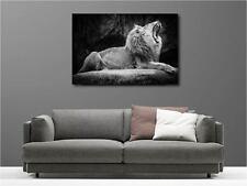 Tableaux toiles déco en kit Lion réf 102648386