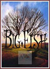 Big Fish  2003 Movie Posters Classic Films