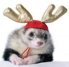 Marshall Ferret Wear, Santa Suit, Antler,Santa Hat, Hat & Sweater, Hat & Collar