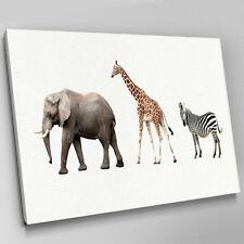 A607 Elephant Giraffi Zebra In Line Canvas Wall Art Animal Picture Large Print