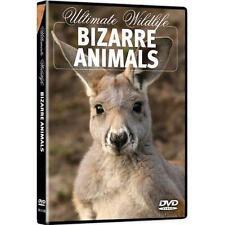 Ultimate Wildlife: Bizarre Animals (DVD, 2011)