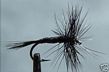 10 x Mouche Sèche Araignée Noire H12/14/16/18/20/22 mosca black spider fly