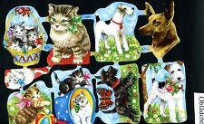 # GLANZBILDER # Krüger 98-04, süße Katzen & Hunde, mit Logo & Nummer