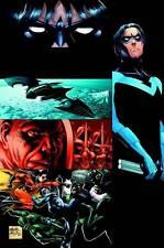 Nightwing: Freefall by Peter J Tomasi (Paperback, 2008)   9781401219659