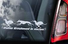 Italian Greyhound in Motion - Car Window Sticker - Dog Sign Decal Gift Idea -V05