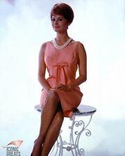 Sophia Loren [2008895] 8x10 PHOTO (autres tailles disponibles)