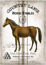 BÜGELBILD-Vintage-Shabby-Nostalgie-French-Pferd-Horse-3254