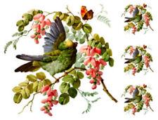 Vintage Image Victorian Bird On Flower Tree Branch Waterslide Decals BIR853