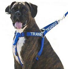 Formación Azul Heavy Duty non Pull arnés para perros de Sherlock Holmes & opcional Plomo conjuntos