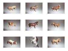 Schleich - Pferde Pferd Pony Reiterin Kutsche Kutscher - 42190 13248 13297 42344