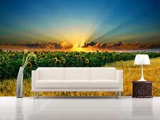 3D Sun, sunflower 4556 Wall Paper Wall Print Decal Wall Indoor AJ Wall Paper