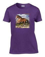 Ladies Quarter Horse Women's T-Shirt