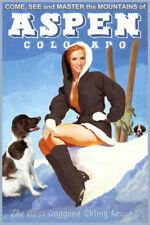 Aspen Colorado Snow Ski Travel Poster Brittany Spaniel Dogs PinUp Art Print 328