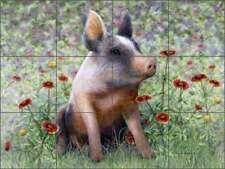 Pig Tile Backsplash Ceramic Mural Matcham Country Life Animal Art RW-MM006