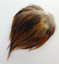 Rotbraun schwarze Hahnenfedern natur,8-14 cm,für Hüte!Angelsport,ungefärbt!