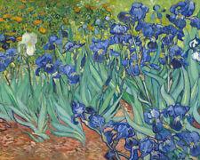 Vincent van Gogh Print Irises II