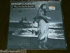 "VINYL 7"" SINGLE - DAVID LASLEY - WHERE DOES THAT BOY HANG OUT - EA 179"