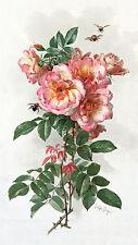 Wild Roses by Paul de Longpre (Art Print of Vintage Art)