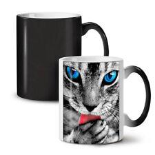 Cute Kitty Paw Cat NEW Colour Changing Tea Coffee Mug 11 oz   Wellcoda