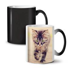 Lindo Gato Foto Animal nuevo cambio de color té café taza 11 Oz | wellcoda