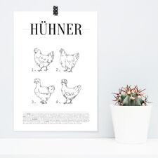 """JUNIWORDS Poster """"Hühner"""" Auflistung Tiere Arten Rassen Charts DIN A4 A3 A2 A1"""