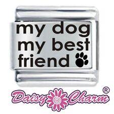 Il mio cane il mio migliore amico-DAISY da JSC accoppiamenti Classic Taglia Italiana Bracciale con Charm