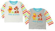 T-shirt WINNIE l'ourson Disney NEUF 100% coton bébé garçon 6 - 12 - 18 - 24 mois