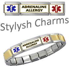 ADRENALINE MEDICAL ID 9mm+ Italian Charm GOLD TONE CENTRE MATTE Starter Bracelet