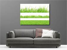 Cuadro pinturas decoración en kit Vistos sobre hierbas ref 60844564