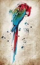 Poster parigi pappagallo ref 13( 3 dimensioni, carta opaco o fotografica)