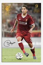 Liverpool FC Firmino 2017 / 2018 Season Poster New - Maxi Size 36 x 24 Inch